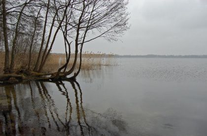 2009-03-22_1588_bearbeitet-1-1